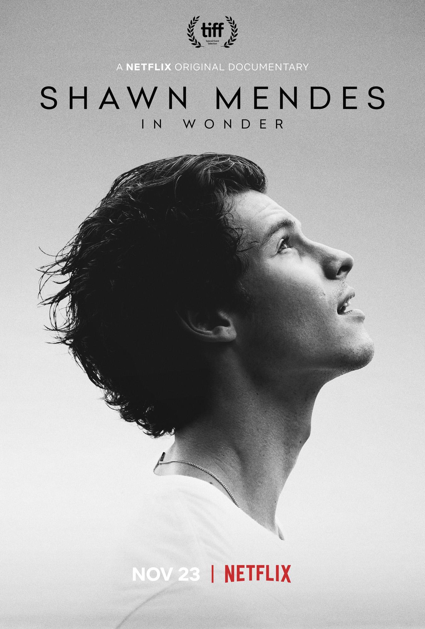 Shawn MendesIn WonderCR: Netflix