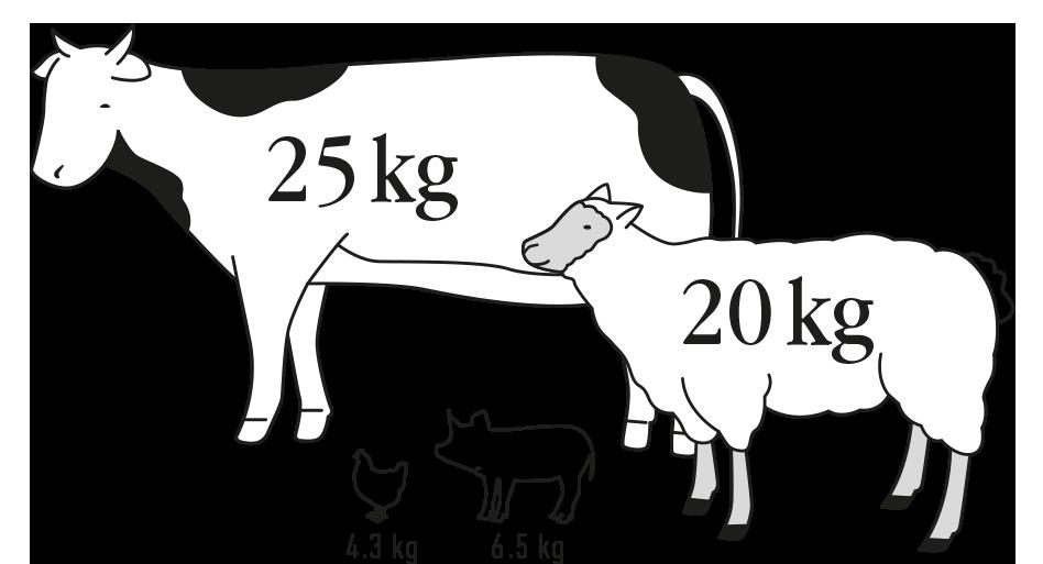 Zvieratá uhlíková stopa